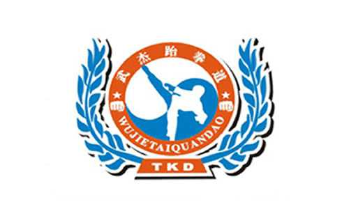 跆拳道logo素材翅膀